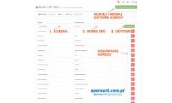 Adresy SEO OpenCart