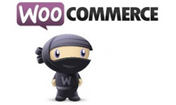 First Data Polcard WooCommerce